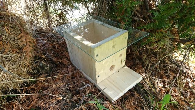 Humlehuset med glassplate for inspeksjonsformål. Vanlig tak er en  planke.